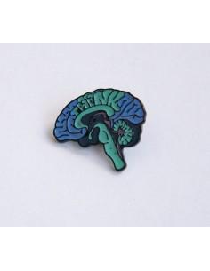 Pin's Cerveau